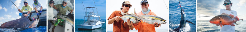 BANNER FISHINGOSA3